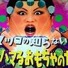 「マツコの知らない世界」にモンチッチ&大助くん登場!