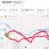 喜茂別でクロカン26km