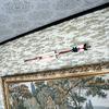 破魔矢を壁に飾りたいときに使う破魔矢掛け