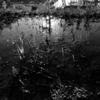 Twitter300字ss:水と泥