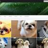 高画質でほぼ無制限に写真が保存できる、flickr(フリッカー)のアカウントを登録してみました