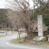 [関西]無計画旅行3日目結果 その2 〜織田信長の城 安土城址へ〜