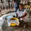 メキシコ メリダ観光 マヤ人末裔の方の一般家庭を訪問 ハンモック、作りたてのトルティーヤ、サボテンで縄作りの実演