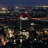 金華山ドライブウェイ展望台から望む夜景。