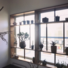 DIY 書斎の窓枠に造作する多肉棚