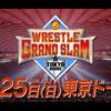 【新日本プロレス】7月は怒涛のビッグマッチ攻勢! さらに9月には西武ドーム2連戦も決定!