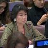 第74回総会第三委員会:特定の国の標的化に対する抗議のなか、イラン、ミャンマー、シリアにおける状況に関する5草案決議を承認(北朝鮮決議——日本 vs 北朝鮮 4th ラウンド)