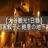 ≪大谷観光1日目≫宇都宮餃子も楽しむ大谷観光