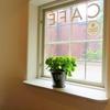 雨が似合う紫陽花を鉢植えで楽しむには?室内で楽しむ初心者向け栽培方法!