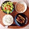 茄子の煮びたし、レタスサラダ、小粒納豆。