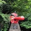 京都 「鞍馬山」〜京都一番のパワースポット〜