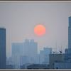 地球(日本)🌎の真裏:「南半球で見る太陽🌞」は...やっぱり『デカ』かった。