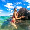 一番熱い象さんビーチ