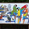 千葉市動物公園:鳥類