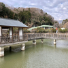 大堤池(静岡県伊豆の国)