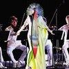 Björk 「Vulnicura Strings」
