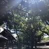 新緑・薫風の熱田さんを歩く。