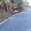 BIKE 47km 県民の森のなっか、アナグマさんにでああった。2年前の自分には遠く及ばず