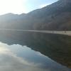 中禅寺湖釣行 6回目 とうとうヤッテしまいました。