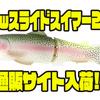 【デプス】スプリングウェイト搭載のマグナムベイト「newスライドスイマー250」通販サイト入荷!