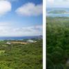 東シナ海とヤンバルの森を一望!約400坪のプライベート空間を丸ごと貸切、「LE CANA MOTOBU(ルカナ モトブ)」2017年11月3日(金)誕生!