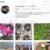 Instagram始めてから一年経過。