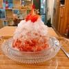 殿堂入りのお皿たち その175【ハチクさん の フルーツかき氷】
