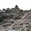 石工さんてすごい!遊佐町『十六羅漢岩』を見に行こう