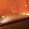 キャンプ中に山火事発生、火の海に囲まれた親子の動画が話題に