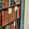 頭が良くなる本棚