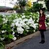 熊本市で27度3分 あさぎり町で28度8分