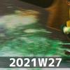 週報 2021W27
