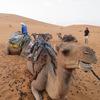 ついにサハラ砂漠へ。。。【サハラ砂ツアー2日目】