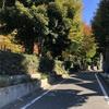 坂道探訪 雑司が谷と目白台北側の坂道