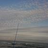 10/14 第44ラウンド 5:15~12:30 石狩方面アキアジ調査 気温3度~12度 イシモシカレイ2匹 ウグイ 8匹
