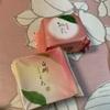 和菓子:清閑院(白桃しぐれ/桃彩)/源吉兆庵(マスカットシャーベット・桃シャーベット/ダックワーズ/白桃プリン