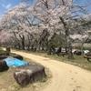 京都:笠置キャンプ場