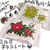 【六花亭】お取り寄せセットを勝手にランキング最終★⑭⑮ミルク&ホワイトチョコレート~日本初だよ~【北海道 スイーツ 通販グルメ】