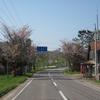 2011.05.19 【再】道東・標茶~音別、さくら旅②