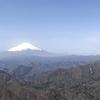 塔ノ岳 3連休の中日に大倉尾根ピストンで日帰りトレーニング登山 春を感じる 2020.3.21