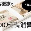 美容医療で100万円も消費した感想