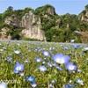 【大分県中津市】奇岩の景色が美しい耶馬渓・禅海和尚の作った青の洞門