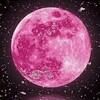 コーヒーブレイク☕今宵は平成最後の満月「ピンクムーン」