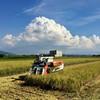 今年の稲刈りも終了です。