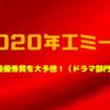 2020年エミー賞の最優秀作品・女優・俳優を予想!!ドラマ部門編