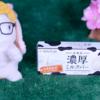 【北海道濃厚ミルクバー】ローソン 6月9日(火)新発売、LAWSON コンビニ アイス 食べてみた!【感想】