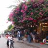 わたしの子連れベトナム旅行12〜地元の名店モーニンググローリーでランチ