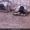 【動画+写真25枚】イスラム国(IS)戦術分析(14)◆戦闘員養成1(軍事キャンプの一覧)