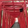 白山(しらやま)神社の赤い鳥居が素敵です。  ⛩⛩ 愛知県 春日井市