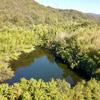 皿池(和歌山県和歌山)